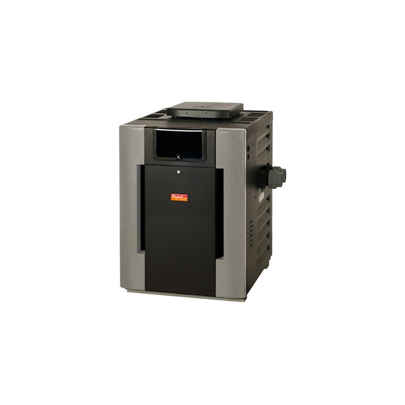 206A Digital ASME Natural Gas Heater 206,000 BTU