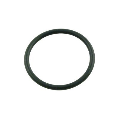 """1"""" Tailpiece O-ring"""